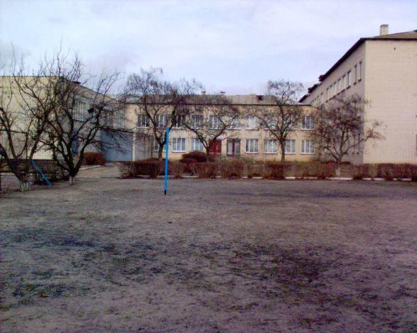 Великокопанівська школа